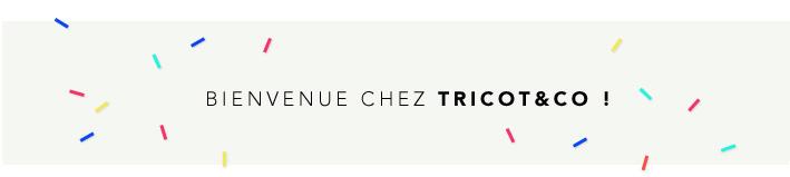 Tricotandco.fr - Première viste